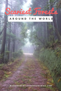 Scariest Forests Around the World - Wandering with a Dromomaniac