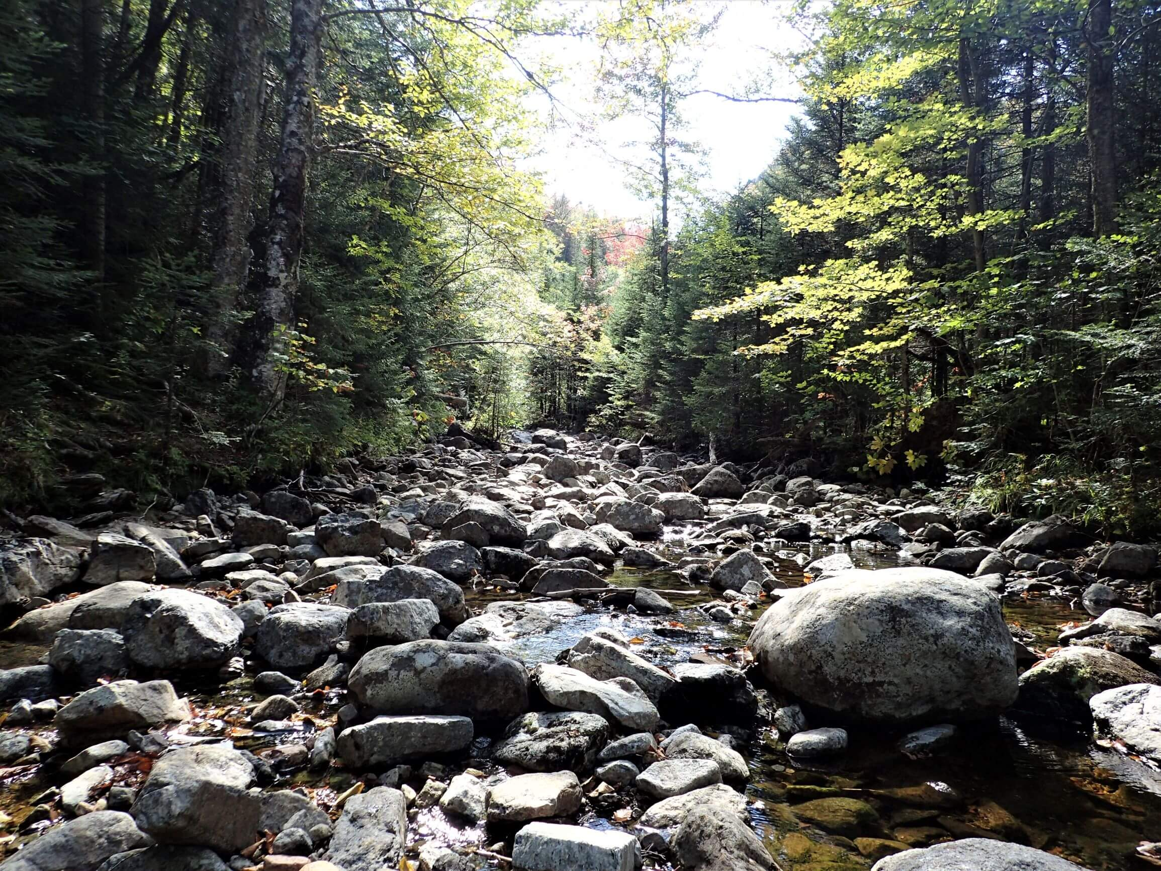 Hiking the Indian Pass Trail in the Adirondacks